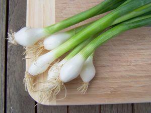 spring-onions-1037180-m