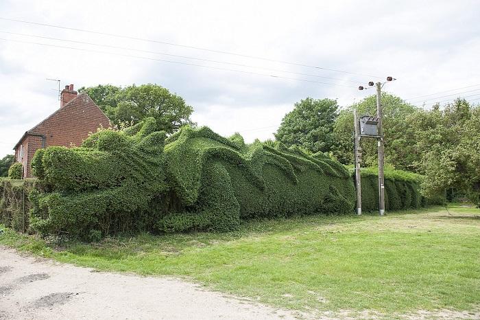 zelený drak z Anglicka