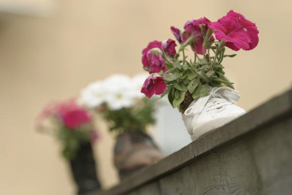 topanková záhrada