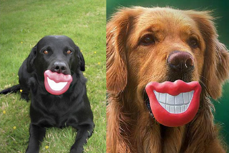 big-lips-smile-mouth-shaped-dog-toy-1