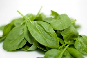 spinach-933499-m