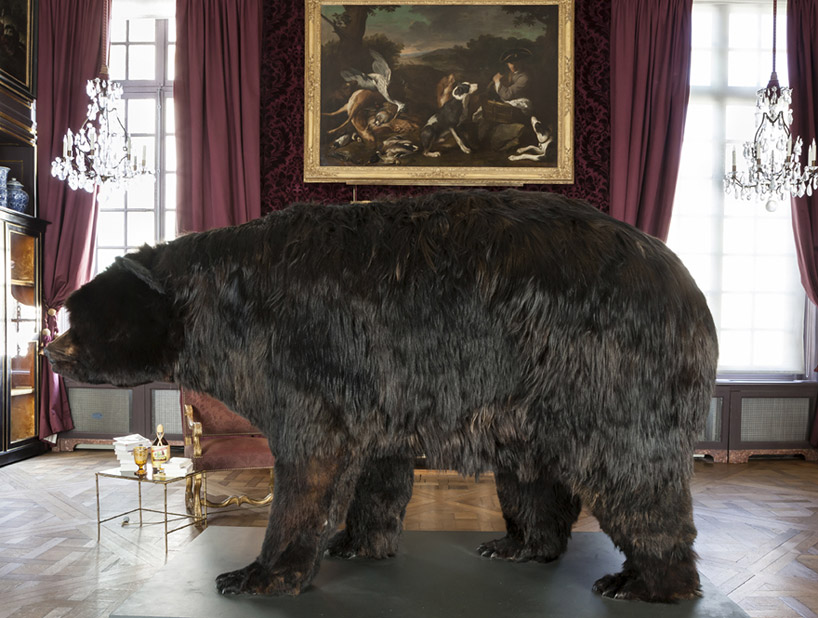 abraham-poincheval-lives-inside-a-bear-carcass-for-two-weeks-designboom-01
