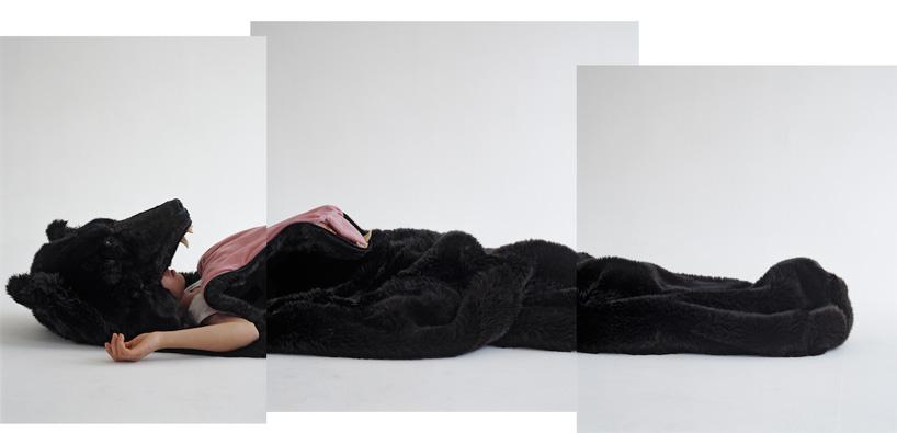 veĺký spiaci medveď